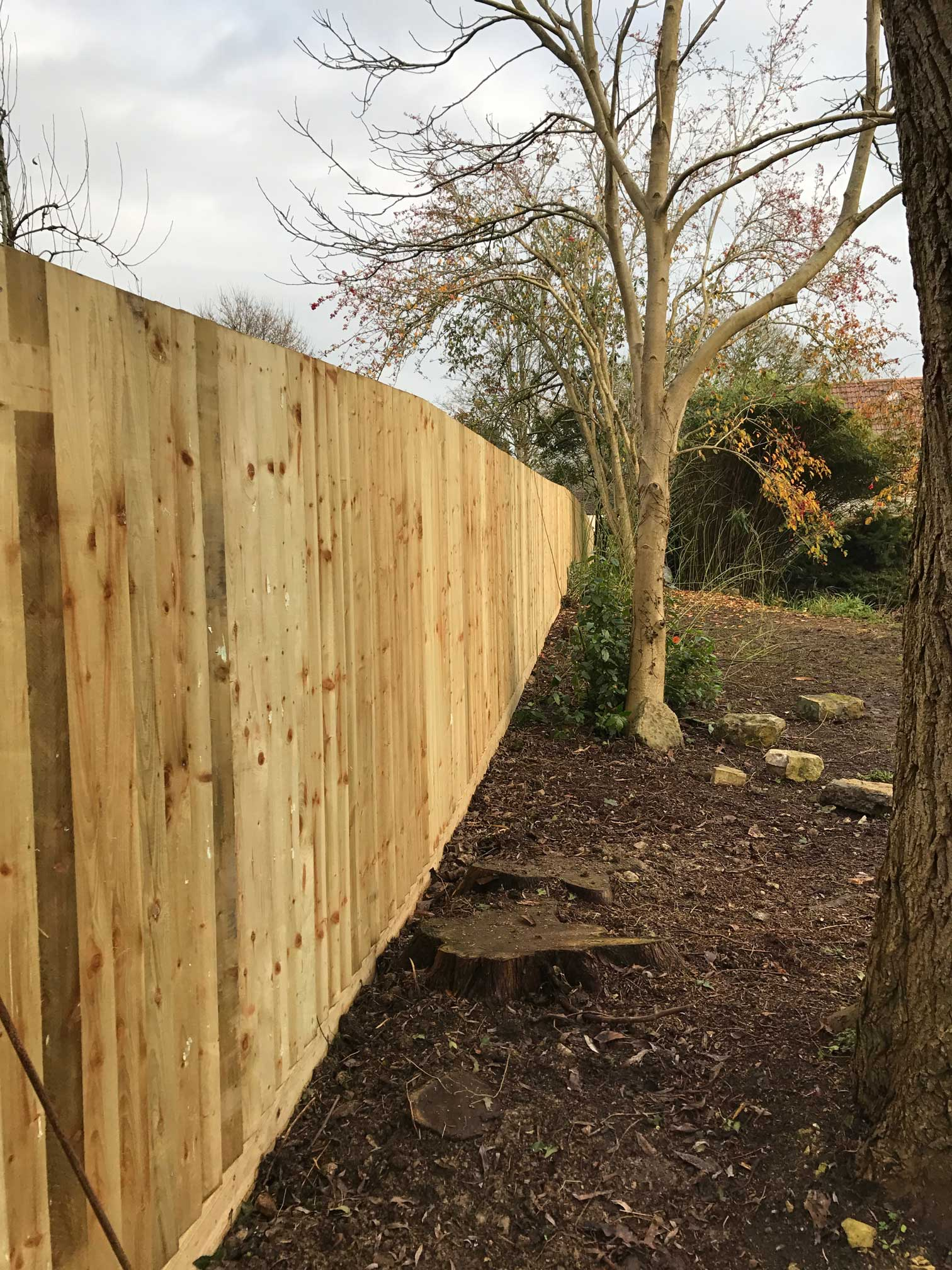 Claire Carter Gardens - Somerset-based horticulturist and garden ...