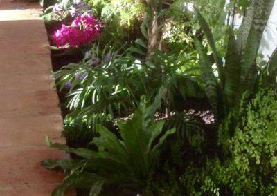 Claire-Carter-Gardens---Indoor-gardens-2
