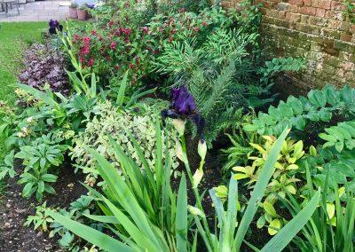 Claire-Carter-Gardens---Walled-Garden-Pics-3