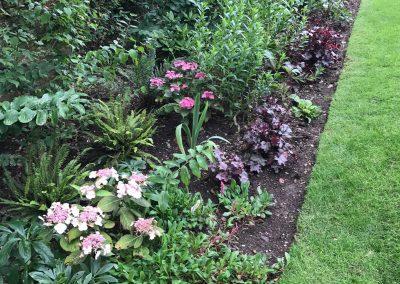 Claire-Carter-Gardens---Walled-Garden-Pics