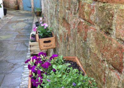 Claire-Carter-Gardens---Walled-Garden-Pics-6