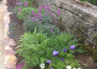 Claire-Carter-Gardens---front-garden-2